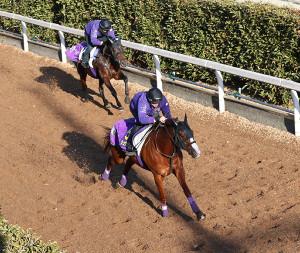 併せ馬に先着するシュヴァルグラン(右)