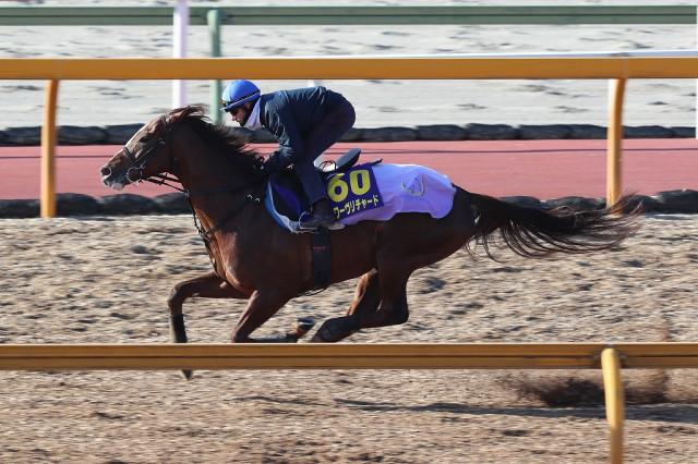 M.デムーロが乗り、CWコースで併せ馬に先着するスワーヴリチャード
