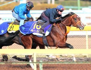 Mデムーロを背に馬なりで伸びたルーカス(右)