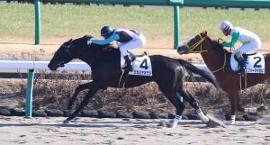 中山5Rの新馬戦を勝ったワカミヤオウジ(右は2着のフォーマイセルフ)