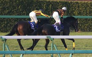 レース後、優勝したキタサンブラックの武豊騎手(右)は2着のクイーンズリングのルメール騎手と握手