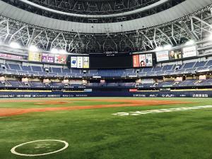 来年3月に芝の全面張り替えが行われるオリックスの本拠地、京セラドーム