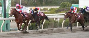 2着に1馬身以上の差をつけ優勝した武豊騎乗のグレイスフルリープ(左)