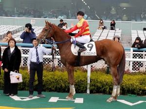 鮫島駿騎手が阪神4レースでJRA通算100勝を達成した