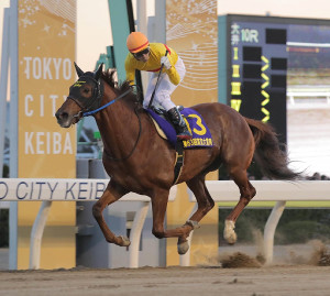 G1レース11勝目を挙げたコパノリッキーの馬上でガッツポーズする田辺(カメラ・池内 雅彦)