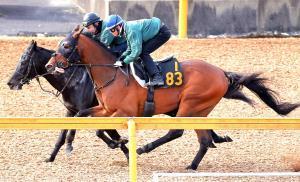 直線は馬なりで外から併入に持ち込んだオブセッション