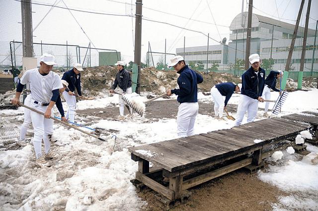 ブルペンを除雪する富山商の選手たち