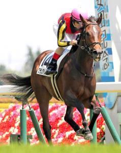 新馬戦レコードでデビューを飾ったグランアレグリア