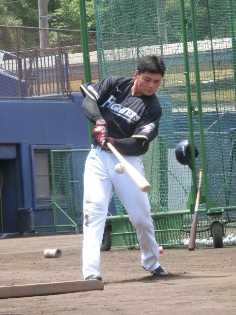 千葉・鎌ヶ谷スタジアムでティー打撃を行う日本ハム・清宮幸太郎内野手