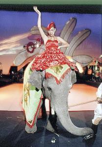 1979年のコンサートでは本物の象に乗っていたユーミン