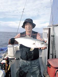 好調な三保沖のワラサ。近年はむらなく毎年釣れている