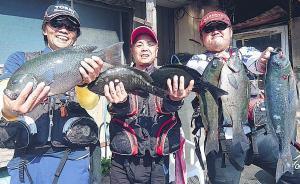 矢部さん(左)らは愛媛・御五神島の磯で50センチの大型グレを筆頭に好釣果を上げた
