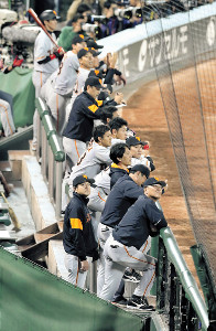 9回、ベンチから試合を見つめる高橋監督(手前)と巨人ナイン(カメラ・中島 傑)