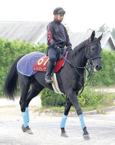 栗東滞在で調整を続ける関東馬のレッドジェノヴァ