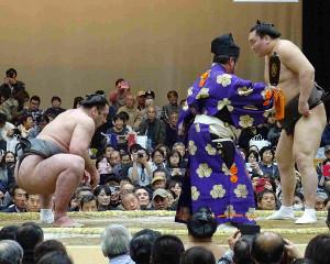 大相撲冬巡業合志場所で、横綱・白鵬と相撲を取る大関・栃ノ心(左)