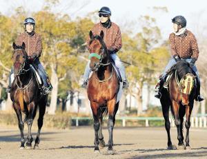 3歳馬ブラストワンピース(中)が有馬記念でG1初制覇を狙う