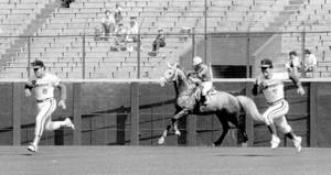 83年4月30日、西宮球場で阪急・福本(右)とバンプ(左)が競走馬・ジンクピアレス号と競走する