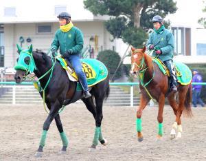 年男の斎藤誠調教師が東西金杯制覇へ送り出す(左から)ブラックバゴとストーミーシー