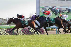 連勝で重賞Vを飾ったヴァルディゼール(左)と外から追い込んだマイネルフラップ(カメラ・高橋 由二)