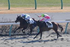 優勝したマリアズバード(左、カメラ・成海 晃)