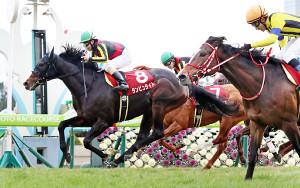 松若騎乗のダンビュライト(左)がステイフーリッシュの追撃をクビ差でしのぎ京都記念を制す