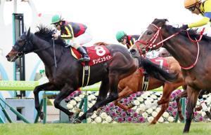 松若騎乗のダンビュライト(左)がステイフーリッシュ(7)の追撃をクビ差しのぎ伝統の京都記念を制す