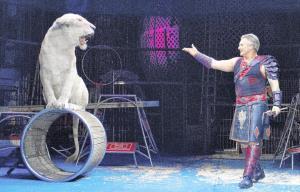 マイケル・ハウズさん(右)の指示で曲乗りを見事に成功させたホワイトライオン(木下大サーカス提供)
