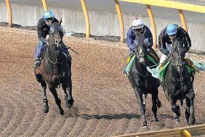 レイデオロ(左)は3番手から馬なりで併入した