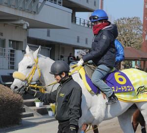 スノードラゴンに騎乗した藤田菜七子騎手