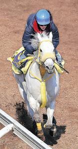 G1馬スノードラゴンの追い切りの手綱を執った藤田菜七子