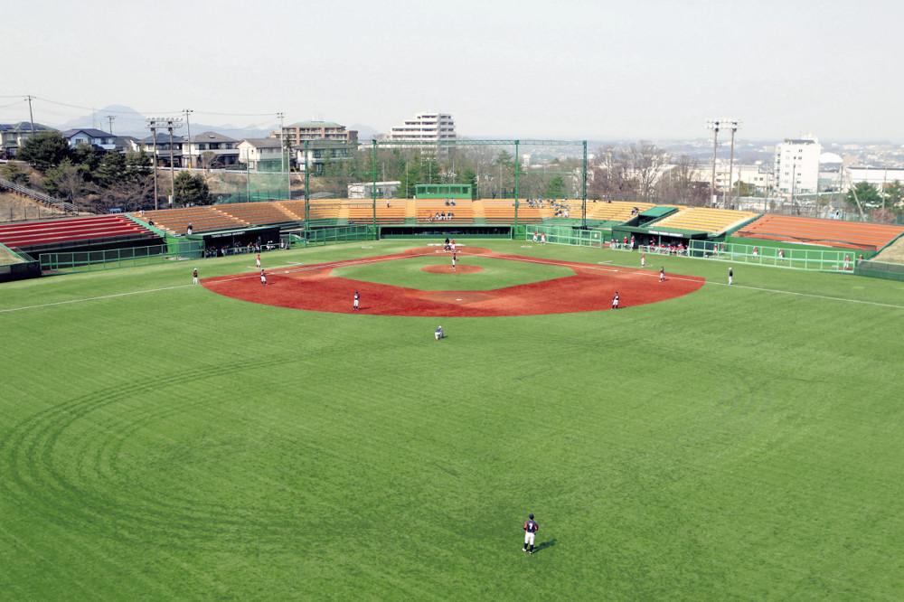 部 大 東北 福祉 野球