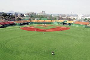 全面人工芝となった東北福祉大野球場(写真は5日のきらやか銀行戦)