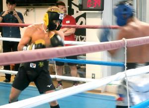 スパーリングで抜群の動きを見せた井上尚弥(左)