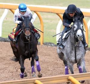 僚馬を内から抜き去る態勢のビーチサンバ(左)