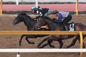 北村友が乗り、CWコース併せ馬で追い切られたクロノジェネシス(左)(カメラ・高橋 由二)