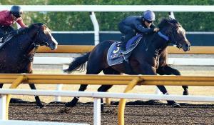 ラスト11秒2で4馬身先着と鋭い加速性能を披露したヴェロックス(右)