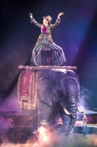 全国ツアー最終公演で象の上に乗る松任谷由実