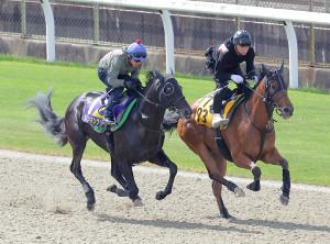 日本ダービー ポリトラックコースで追い切ったダノンキングリー(左、特12、馬上は戸崎圭太騎手)(カメラ・相川 和寛)