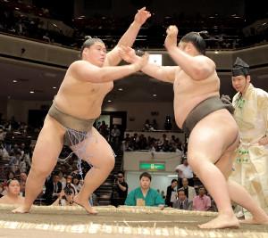 納谷(左)は貴ノ富士に押し出しで敗れた(カメラ・越川亘)