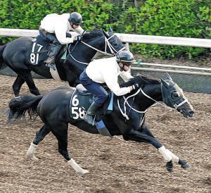 ディープダイバー(右)は余力十分に併走馬を突き放した