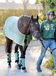 無敗制覇に挑む皐月賞馬のサートゥルナーリア