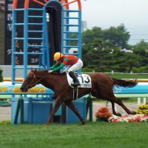 函館4R・3歳未勝利戦で初勝利を挙げたナックゼウス(カメラ・坂本 達洋)