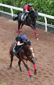 坂路をブラゾンダムール(奥)と併せて、松山弘平騎手鞍上で追い切り先着したグルーヴィット(カメラ・渡辺 了文)