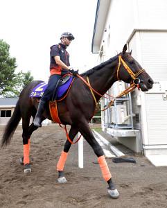 札幌記念で帰国初戦を迎えるクルーガー。馬体の張りは7歳の年齢を感じさせない