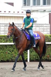 唯一の3歳馬ランフォザローゼスはキングカメハメハ産駒
