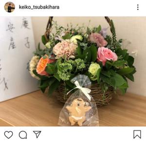 インスタグラムより@keiko_tsubakihara