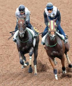 目下3連勝中のザダル(左)は馬なりで楽々と併入