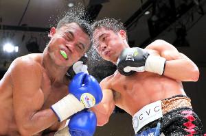 6R、マナカネの顔面を捉えダウンを奪いTKO勝利する伊藤雅雪