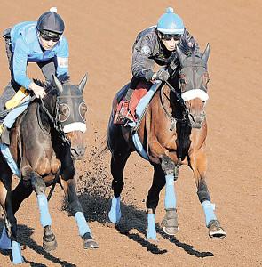 カレンブーケドール(右)は併せ馬を消化。一度叩いた効果は十分だ