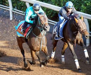 栗東滞在中の関東馬パッシングスルー(左)は他厩舎の馬と併せて追われた